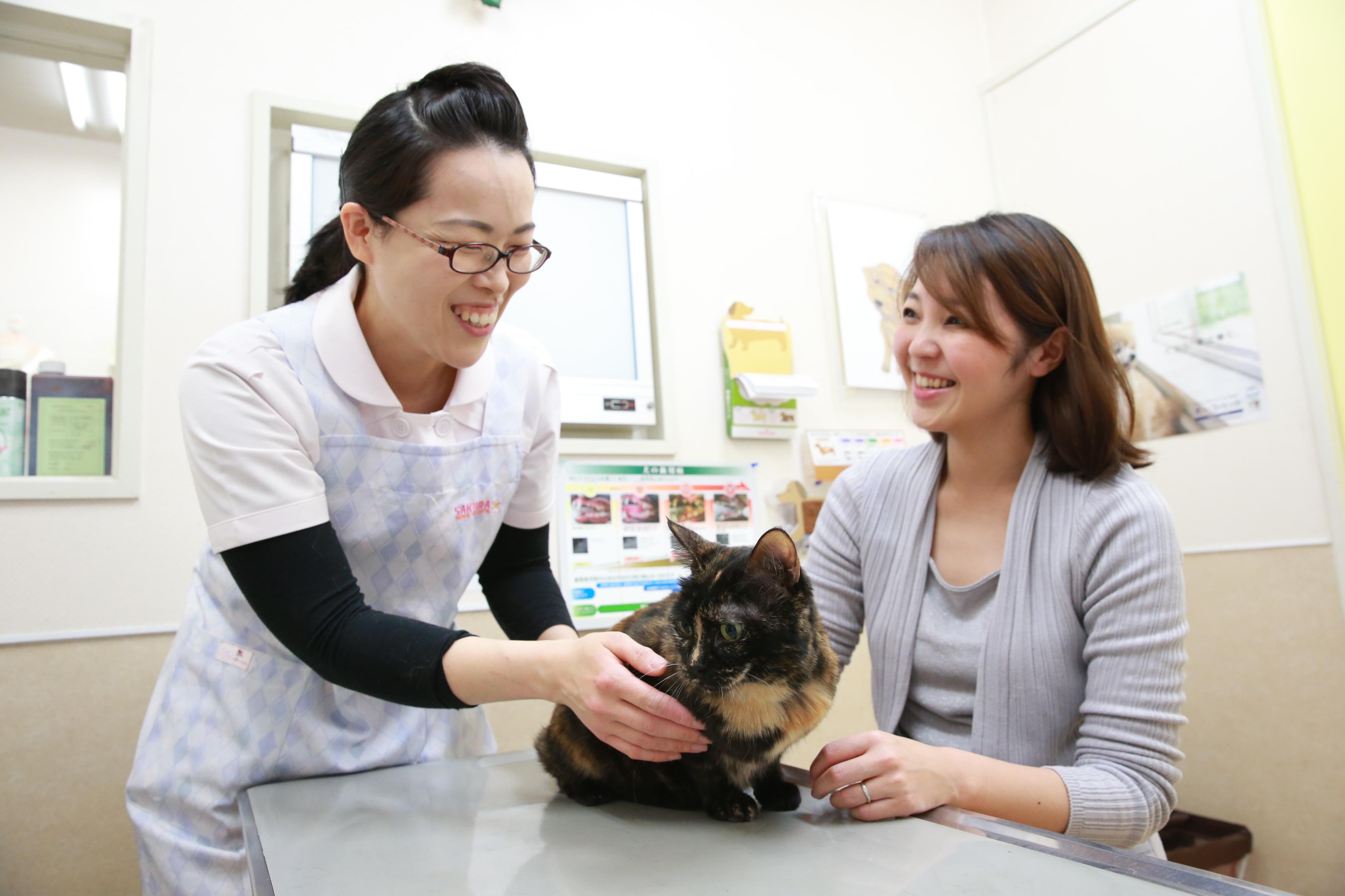 さくら動物病院の動物看護師スタッフ紹介