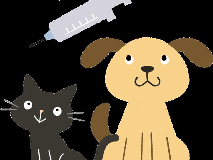 ペットホテルご利用の際には予防接種を