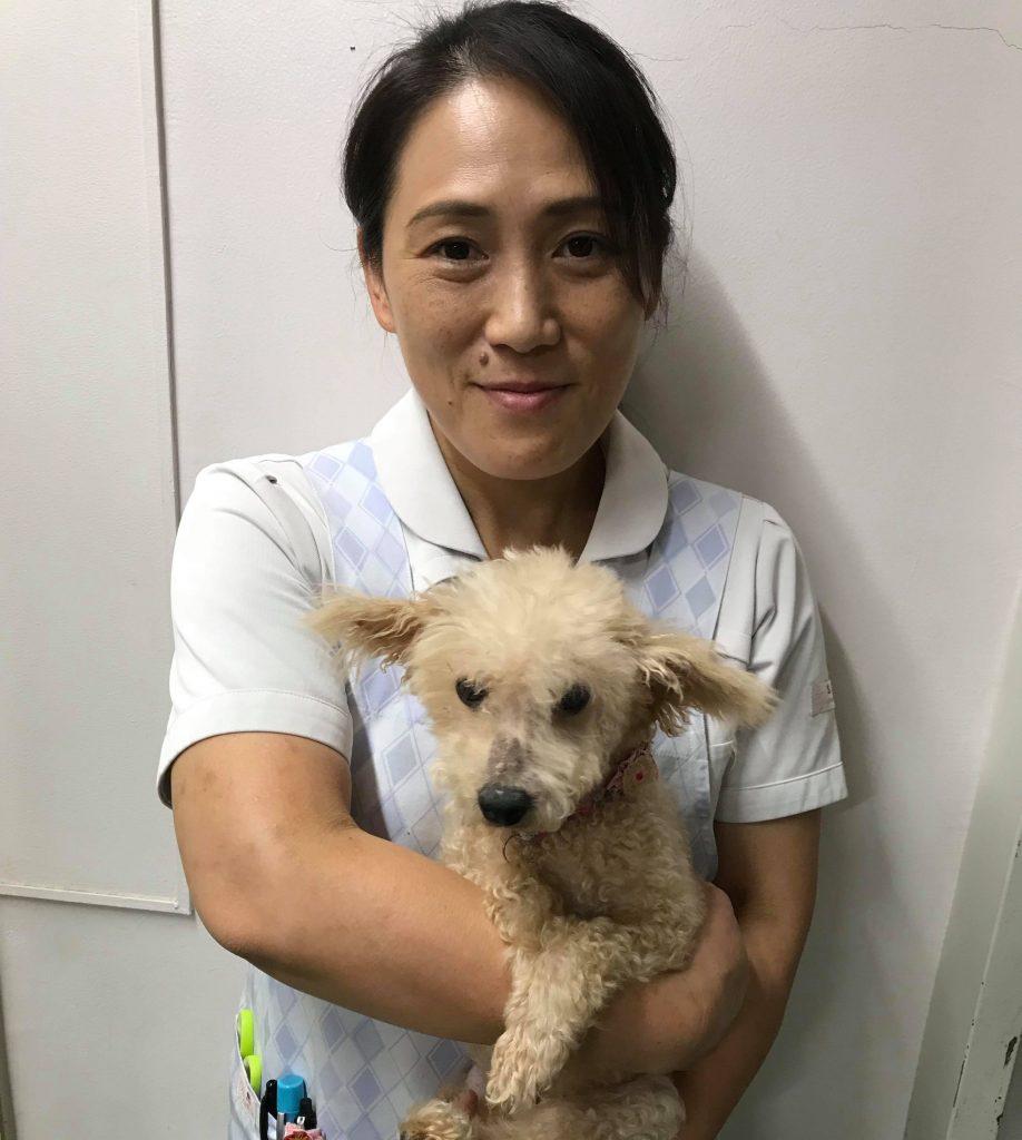 動物看護師の濱口さん